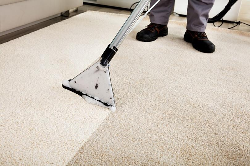How To Clean Carpet At Home Mycoffeepot Org