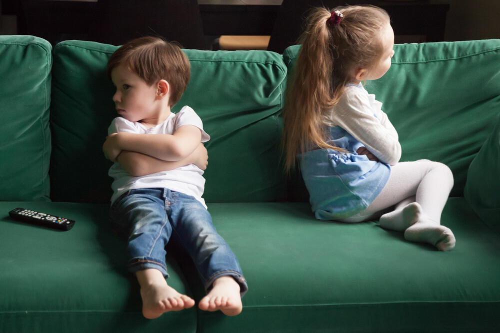 Jealousy among Siblings: Symptoms and How to Act  Jealousy Between Siblings
